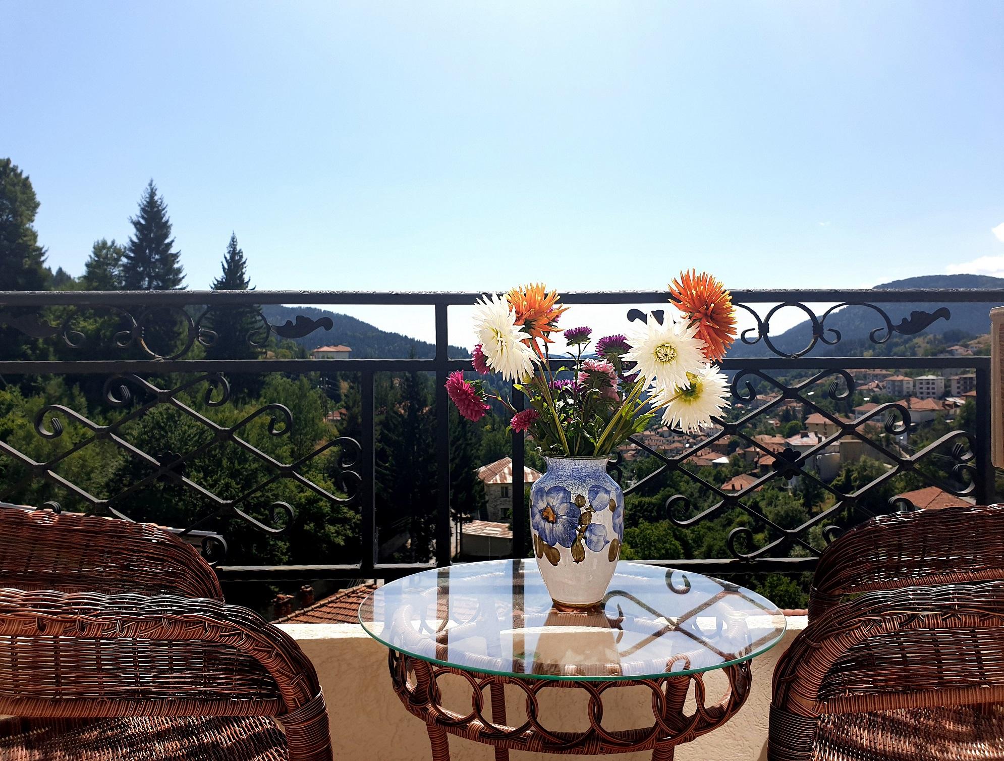 Красива гледка от Къща за гости Даяна с. Момчиловци