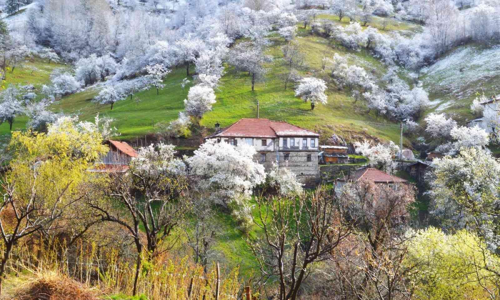Къща за гости Даяна